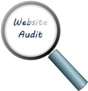 Web services include the website audit